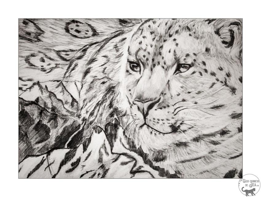 leoparddesneigessemaine4web